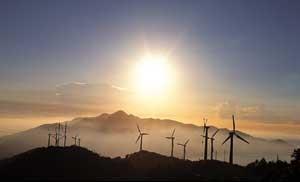 Turbines at dawn
