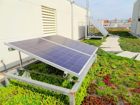 Photo: World Wildlife Fund Green Headquarters