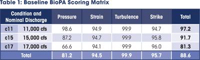 baseline biopa scoring matrix