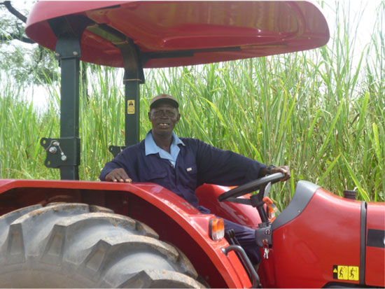 Sugarcane Bioethanol Project in Sierra Leone Underscores the Challenge of Producing Bioenergy in the Developing World