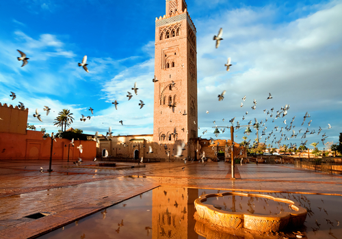Morocco's Solar Situation: to PV or to CSP?