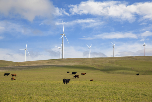 US Wind Energy Selling At Record Low Price of 2.5 Cents per kWh