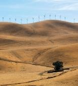 Will California Achieve its Goal?