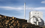 Diversifying Fuel Supply: Key Players in Biomass