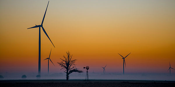 Bats and Wind Turbines: Moving Beyond Dracula