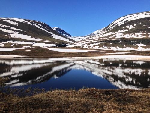 Sustainable Development in the Arctic
