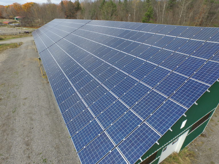 Boarding horses and solar panels: Ontario stable rents out roof for clean energy