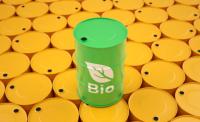 Update: Europe's Biofuel Reform Stalled