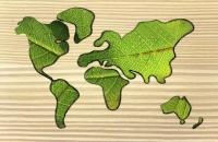 Global Renewable Energy Status Uncovered