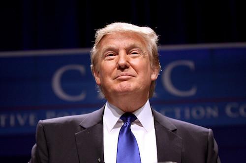 President Trump: Energy, Reality, Focus