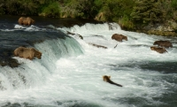 Are Run-of-River Hydroelectric Systems Ready to Ride US Currents?