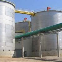 Big Oil Bets on Biofuels