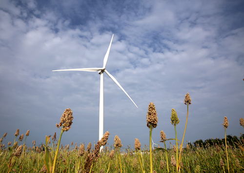Developers struggle to actually build low-cost wind farms in India