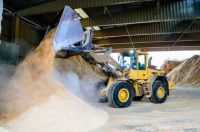New Report Sheds Light on the Potential of Biomass