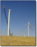 Wind Power Cropping Up in Oregon Farmlands