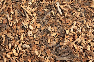50-MW Albany Green Biomass Project in Georgia Due for Startup in Early 2017