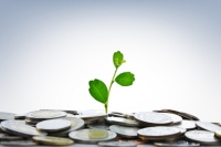New Head of Australia's Green Fund Sees First Investment by July 2013