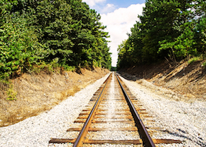The Trump Decision on US Tariffs and the Trolley Problem