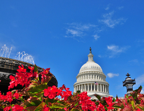 On the Winds of Spring: The 2017 – and a half – Omnibus Spending Bill