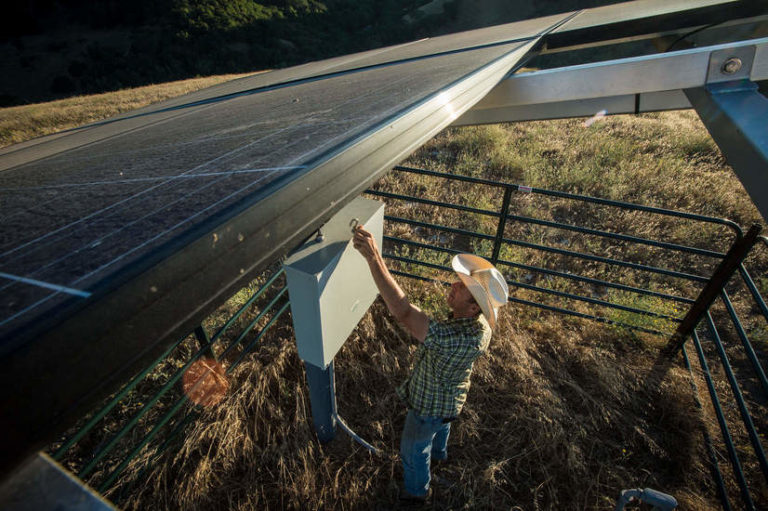 How a First Nation Bargained to Build B.C.'s Largest Solar Farm