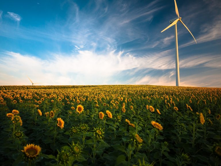Europe's Green Deal sets new course for economic growth