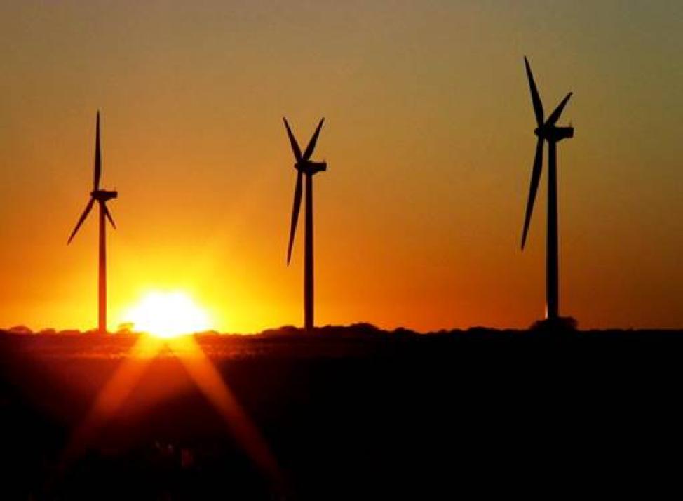 Pattern Energy's Gulf Wind facility in Kenedy County, Texas