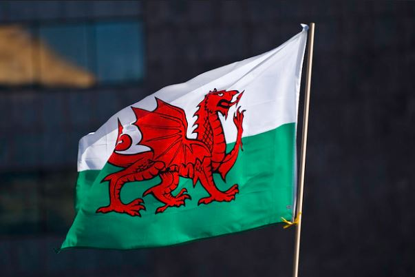 Wales goes to the polls with renewables firmly on the agenda