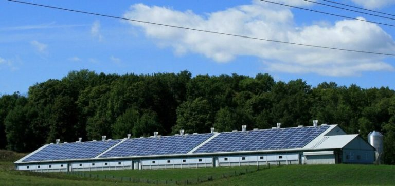 Given detailed analysis, grids can host the most solar