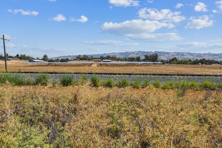 Lagunitas brewery's innovative 2.1-MW solar array brings a wealth of benefits