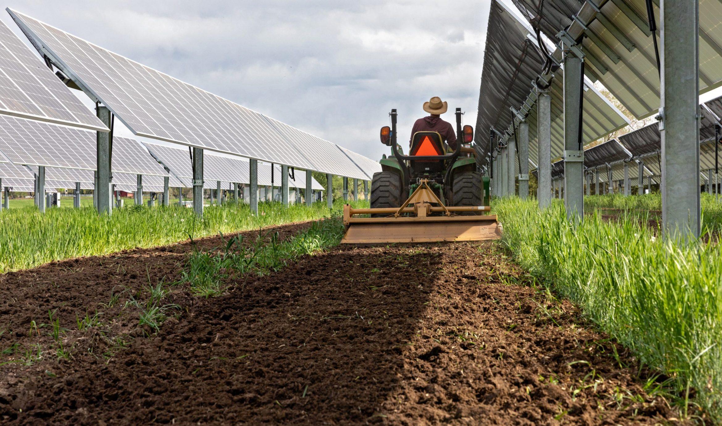 Solar Farm Carbon Sequestration