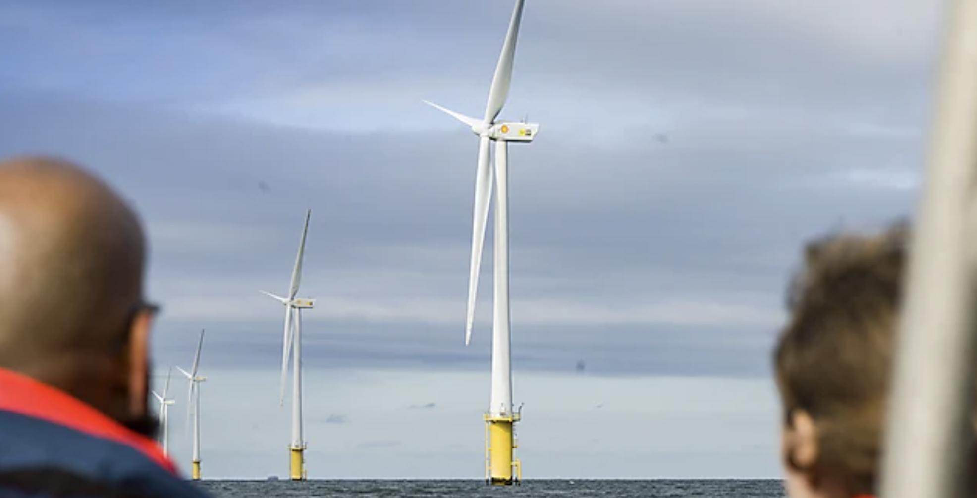 Joint venture targets 'vast potential' of U.S. floating offshore wind market